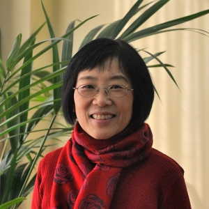 Ambassador Yang Yanyi, Head of the Mission of the People's Republic of China to the European Union