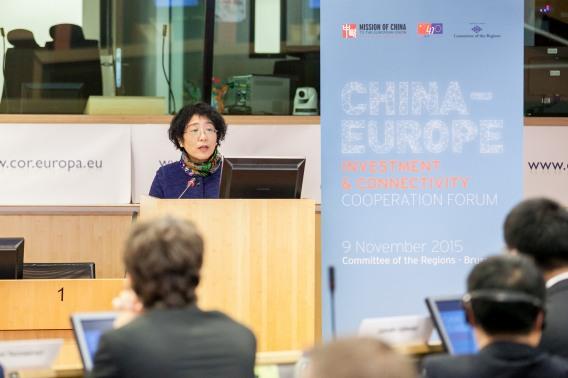 Ambassador Yang China-Europe Investment Forum
