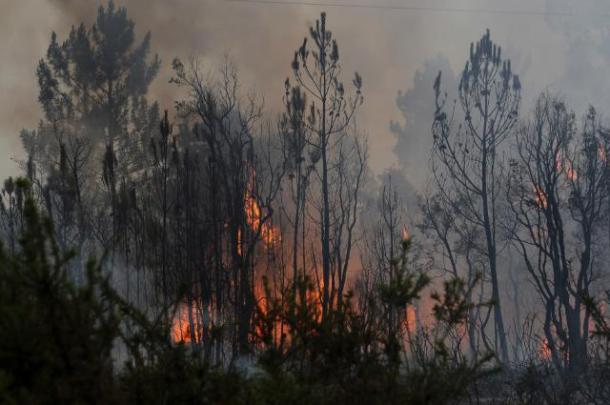 Natural Disasters 2018
