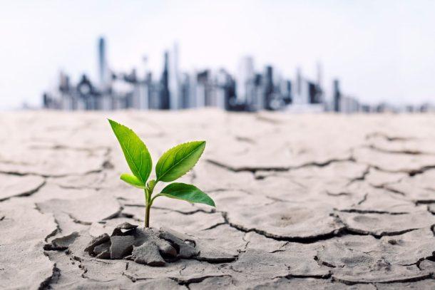 Sustainable Finance 2018