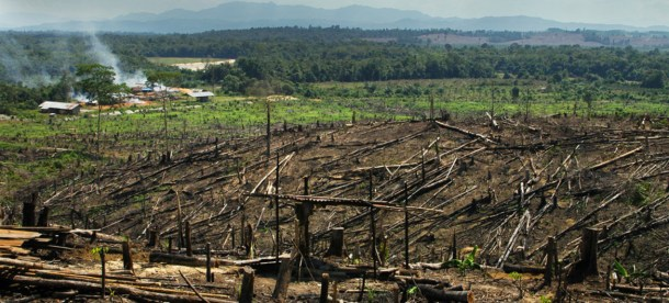 Deforestation UNEP 2018