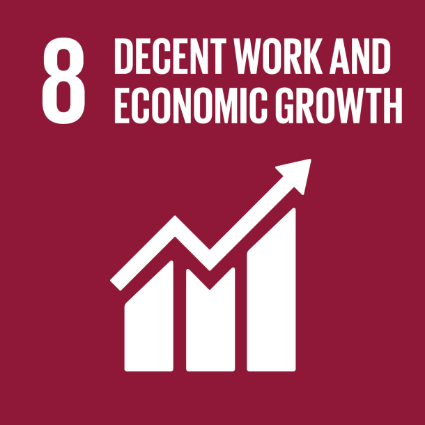SDG 8 Decent Work Economic Growth 2018