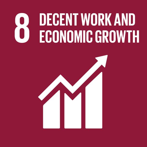 SDG 8 Decent Work Economic Growth 2018