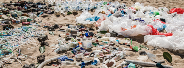 UNEP Plastic Pollution