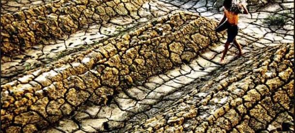Drought UN News.jpg