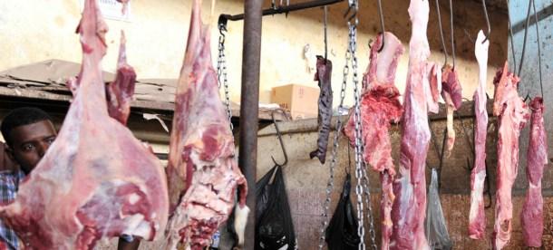 Meat UN 2018