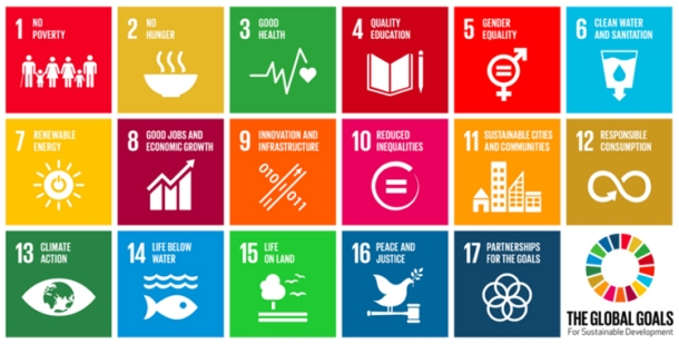 SDGs United Nations