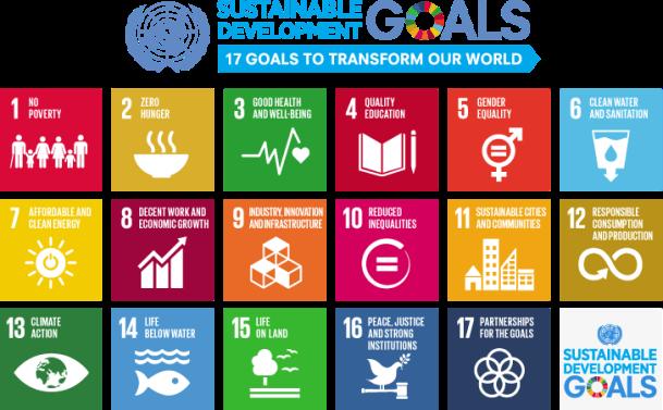 UN SDGs 2015
