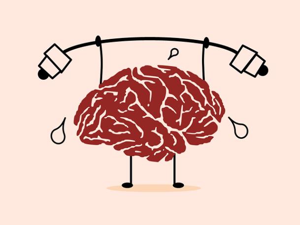Brain 201