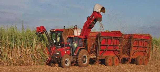 Farming UN news