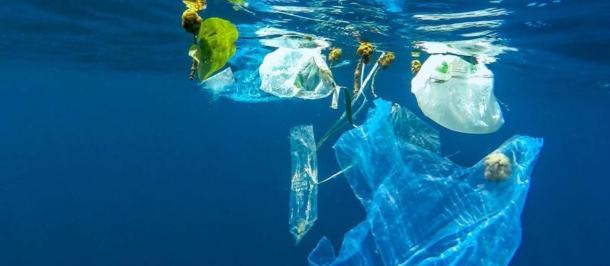 Plastic Bags 2018