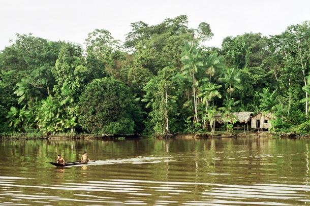 Amazon FAO