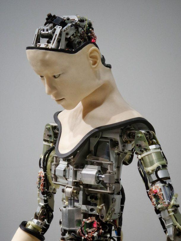 Robot 2019