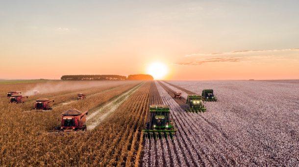 agriculture_2019).jpeg