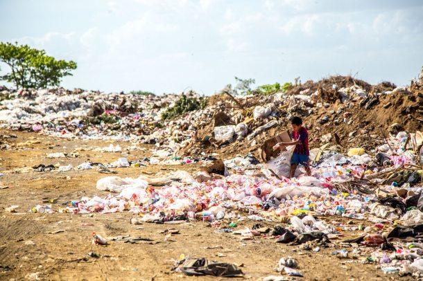 waste 2019