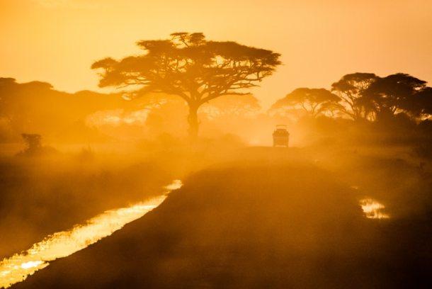 Africa 19