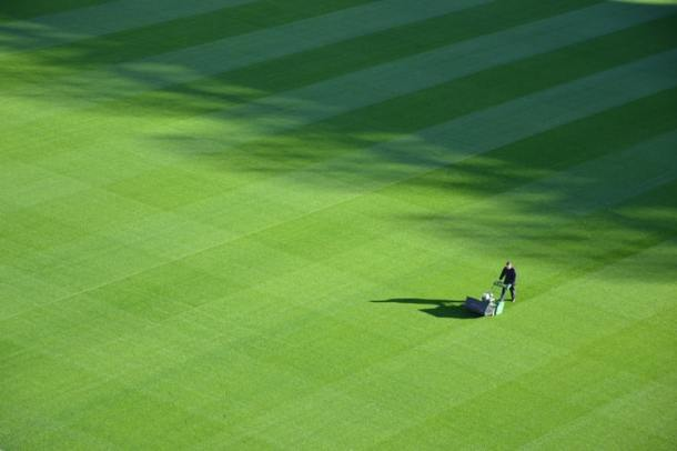 A Biodiversity Scientist Explains The Problem With Our Neat Lawns The European Sting Critical News Insights On European Politics Economy Foreign Affairs Business Technology Europeansting Com