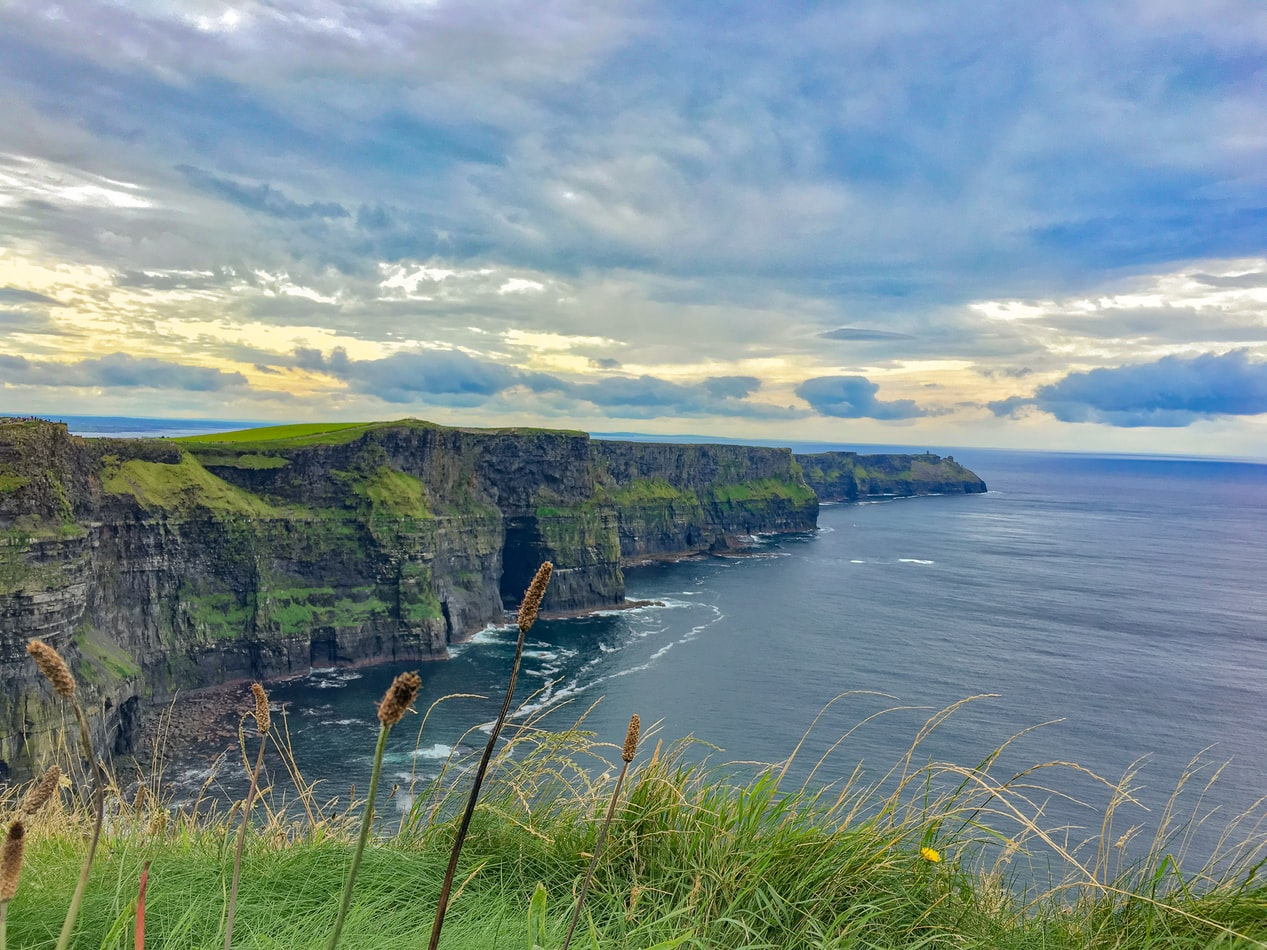 Ireland's planning to make its Emerald Isle even greener