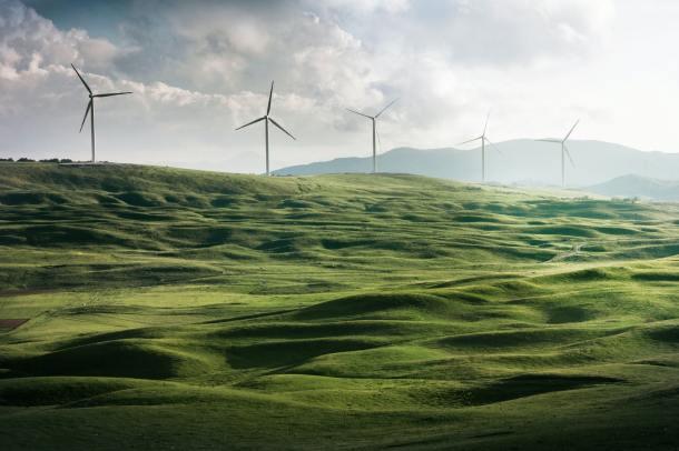 wind mill_