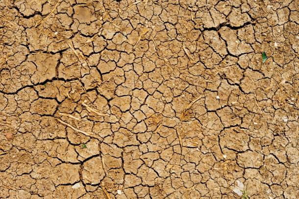 drought 2020
