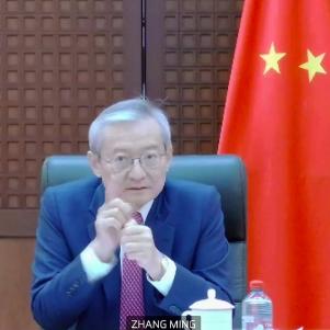 Ambassador Zhang Ming 2020